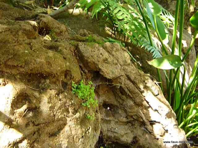 Mur végétal exterieur en faux rochers pour bassin aquatique - etat ...