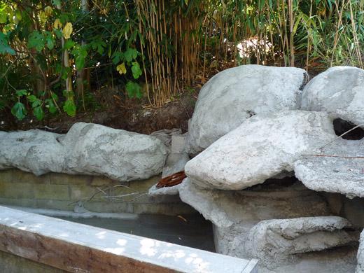 Photos des tapes de la construction d 39 une cascade for Construire une cascade pour bassin