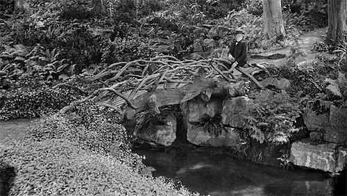 Rock gardening les pionniers du faux rocher d coratif faux rocher et mur v g tal for Jardin 19eme siecle