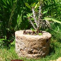 rocher résine jardin
